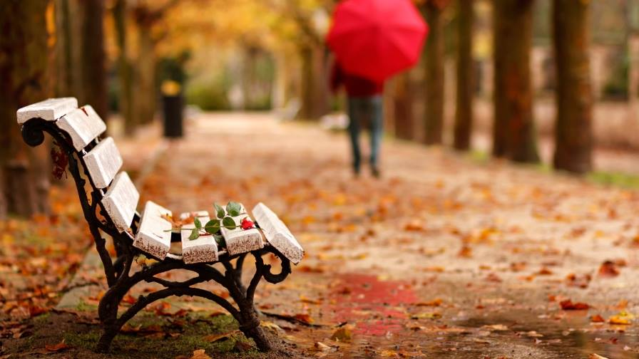 Златна есен - Биляна Стефанова - психолог Варна